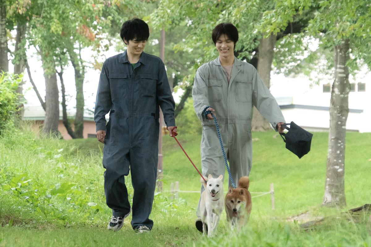 7/22(木・祝)映画『犬部!』初日舞台挨拶 開催決定!
