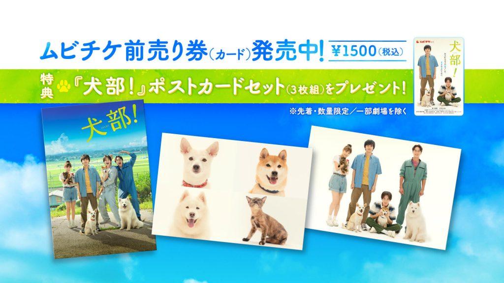 映画『犬部!』ムビチケ前売り券 発売開始!