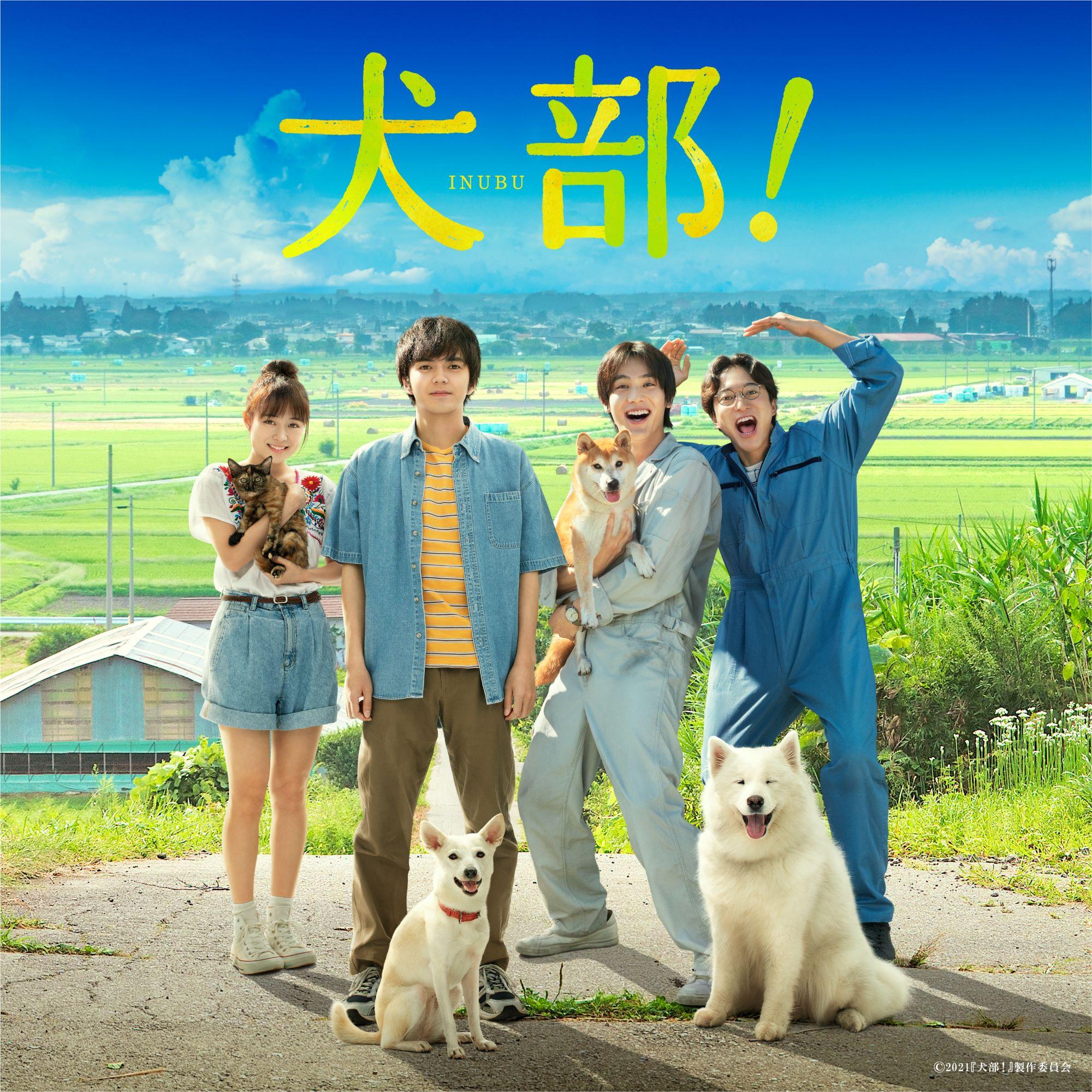 映画『犬部!』オリジナル・サウンドトラックが7月21日(水)より全世界配信開始!
